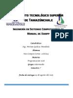 Manual de XAMPP_Noe Campos.pdf