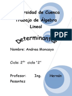 trabajo de algebra determinantes.doc