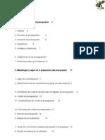Presupuesto - Cristobal Del Rio (UNAM)