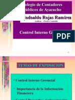 Control Interno Gerencial