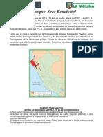 elbosquesecoecuatorialinfanteoliverahuamanidomingosagasteguiyllescasactividad1-110514032354-phpapp01.pdf