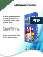 Multi Lizer 4 PDF