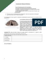 Cuestionario Tiempos Primitivos