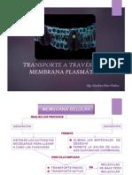 4.Transporte a través de la membrana.pdf