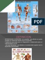 quirurgica de Extremidades Superiores e Inferiores