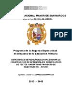 Estructura Proyecto IAP