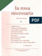 la rosa necessaria n. 6