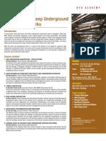 Supervision of Deep Underground Construction Works