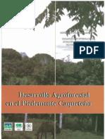 PROYECTO AGROSILVOFORESTAL CAQUETA