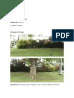 Ecotipo y Ecocline.docx