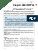 Molecular Hydrogen for Brain Injury (pdf)