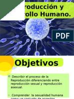 Reproduccion y Desarrollo Humano.
