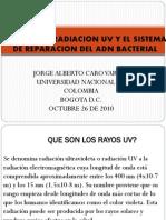 Daños de la Radiación UV