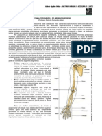 Anatomia i - Membro Superior-2