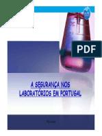 Apresentação LAb.pdf