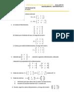 Ejercicios Matrices y Determinantes