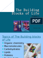 The Building Blocks of Life- Sabrina