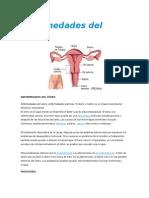 Enfermedades Del Útero