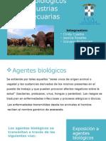 Riesgos Biologicos en Industria Agropecuaria Final