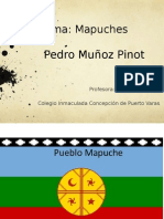 PPT Los Mapuches
