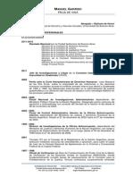 Curriculum Vitae Manuel Garrido