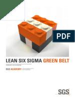 MS1 - Lean Six Sigma Green Belt