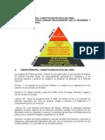 LECCION-2.-SEGUNDA-SEMANA.-CPP-y-otros-dispositivos-legales-relacionados-con-la-DN..docx