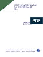 Fundamentos Patologia Estruturas Pericias Engenharia