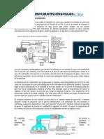 Sistemas de Inyección Gasolina