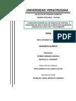 01- JUNIO-14 tesis terminada.pdf