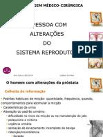 EMC_Sistema_reprodutor_2013-14.pdf