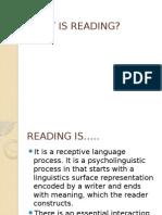 Presentación1 READING