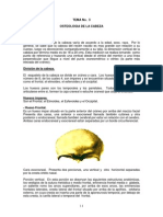 TEMA 3 Anatomía Humana