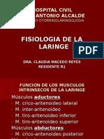 fisiología larínge