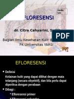 78654058-EFLORESENSI