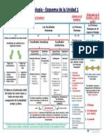 Antropología - Esquema de la Unidad 1.pdf