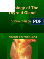 Pathology of Thyroid