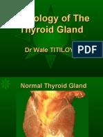 Pathology of Thyroid