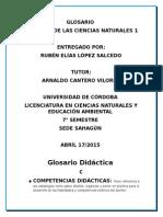 Glosario Didáctica
