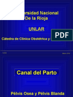Unlar 03 Canal Del Parto TL