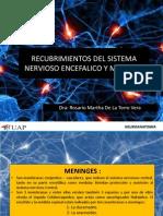 Recubrimientos Del Sistema Nervioso Encefalico y Medular