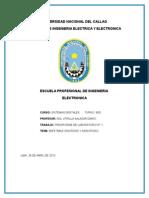 pre-informe-1 (1).docx
