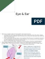 Eye & Ear Histology Slideshow
