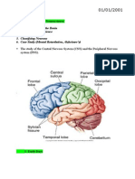 Principles Of Cognitive Neuroscience 2nd Edition Pdf