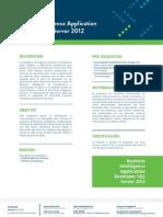 Business Intelligence Application Developer SQL Server 2012