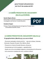 EXTRACCION DE ACEITE DE BURITI.pdf