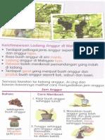 Presentation1 (10)