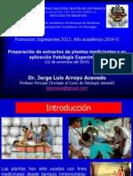 12 09 14 Preparación Extractos Patología 2014