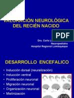 Valoración Neurológica Del Recién Nacido