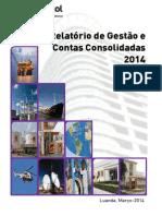 Relatorio e Contas 2014